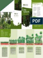 Jardins Agroflorestais