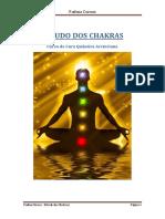 Estudo Dos Chakras - Padma Cursos