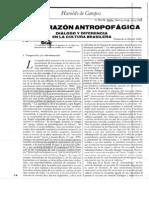 Haroldo de Campos - De la razón antropofágica