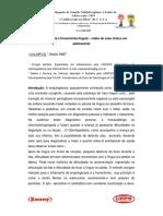 04-anquiloglossia_e_frenectomia_lingual_relato_de_caso_clinico_em_adolescente