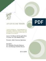 AVANCE_DE_TESIS_final