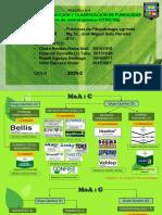 Control Quimico Fungico Para Cítricos-FRAC C y G