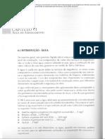 AMBROZEWICZ, Paulo Laporte. Materiais de Construção - Cap. VI e VII