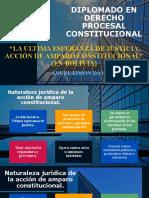 ULTIMA ESPERANZA DE JUSTICIA AAC Acción de amparo constitucional Siglo XX