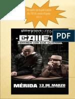 Calle 13 Merida Music Fest