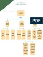 Mapa conceptual POLIMEROS