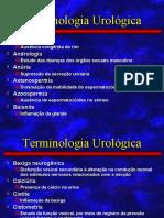 terminologia_urologica