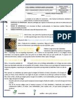 Guía Habilidades La Mariposa Monarca (1)