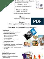 Plan de Cuidados SR Rafael Valenzuela Santiago