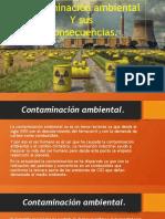 Infografia de La Contaminación Ambiental.
