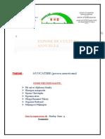 EXPOSE DE CULTURE                             ANNUELLE