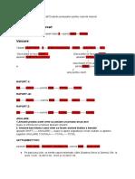 Document Fără Titlu (2)