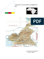 stage_cam_rapport_cameroun_1260282172514