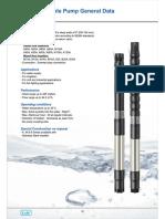 6-Inch-CI-50-Hz lubi pump