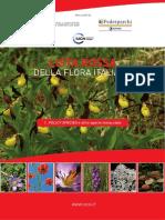 Comitato IUCN Lista Rossa Della Flora Italiana Policy Species