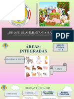 Clase de Animales Carnívoros, Herbívoros y Omnívoros