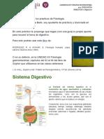 Practico 1 Digestivo