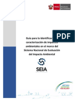Guía Identificación y Caracterizacion Impactos