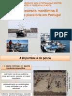 2.4 Rec. Marítimos II - Atividade Piscatória Em Portugal 20-21