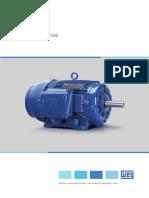 WEG w22 Motor Trifasico 50025536 Brochure Portuguese Web