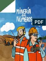 Mineria en Numeros 2020 Web