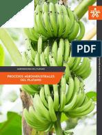 MF3_Procesos_agroindustriales_del_platano SEMANA TRES AGROINDUSTRIA DEL PLATANO