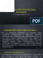 jurisdiccion voluntaria PB