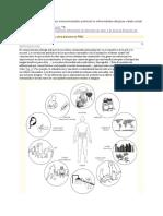 Paper microbiota