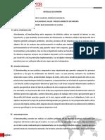 Articulo de Opinión - Benchmarking rodrigo torres cuadros (1)