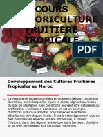 Cours Arbo Tropic