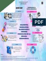 Infografía de Reactivos, colorantes, materiales e insumos en técnicas histológicas