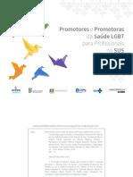 Promotores e Promotoras Da Saúde LGBT Para Profissionais No SUS - UFRGS, 2018