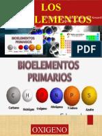 Biologia Trabajo Bioelementos