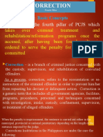 CORRECTION- Fourt Pillar of the PCJS