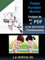 disforiageneroinfanciaadolescencia_felihurtado (1)