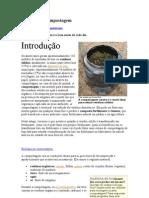 Biologia na compostagem