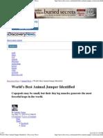 World's Best Animal Jumper ..