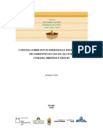 Relatorio_Geral_Oficina_Povos_Indigenas_Alcool