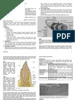LTM I - Histologi Sistem Gastrointestinal