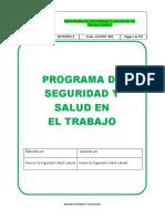 Programa de Seguridad y Salud en El Trabajo(Psst)