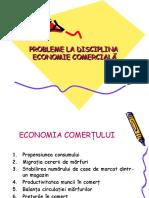 problemeFR Economie Comerciala