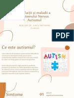 Disfucţii şi maladii a Sistemului Nervor . Autismul
