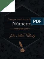 Sinopse dos livros do Antigo Testamento_ Numeros (Sinopse dos livros da Biblia Livro 4) - John Nelson Darby