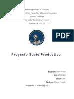 Informe de Proyecto Socio Productivo 2