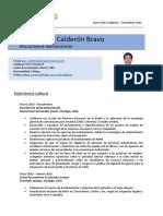 Template CV 2020 MRP