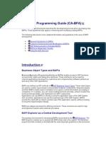 BAPI Programming Guide