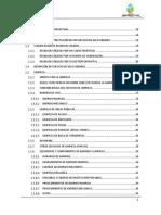 Guia Ejecutiva Diseño de SAU _ Para GAMs