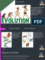 Concepto y Evidencias de la Evolución