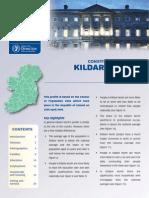 Kildare North