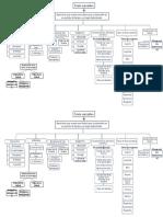 Mapa Conceptual de Texto Narrativo